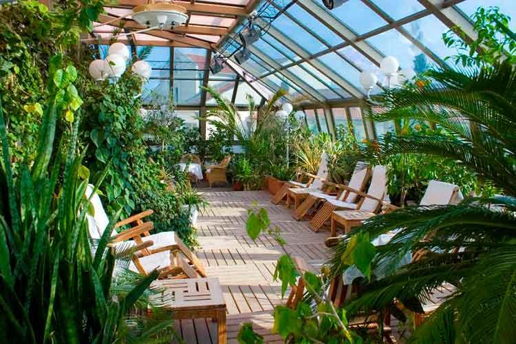 зимний сад в квартире10